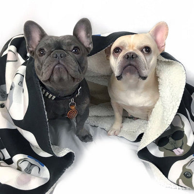 Frenchie Blanket Frenchiestore
