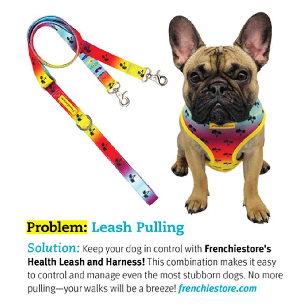Frenchiestore Multiple Configurations Health Leash | California Dreamin', Frenchie Dog, French Bulldog pet products