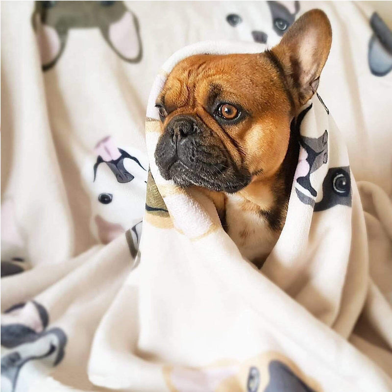 Frenchie Blanket | Frenchiestore | Mélange Bouledogue Français