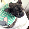 bluenjy indossa blue frenchie bum shirt frenchie abbigliamento biologico