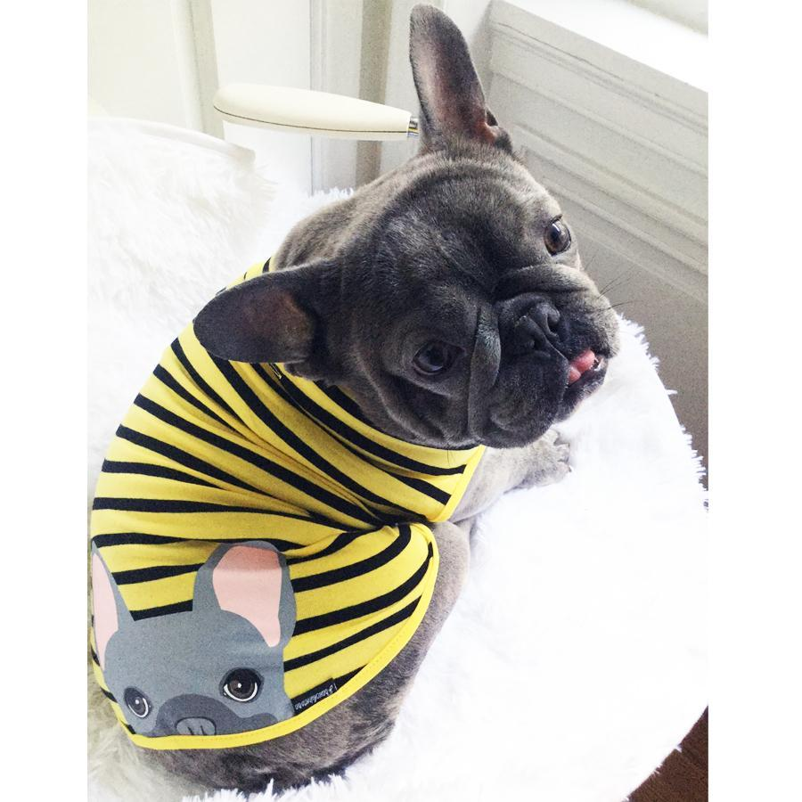 Frenchie Shirt | Frenchiestore | Blue French Bulldog in Bumblebee, Frenchie Dog, French Bulldog pet products