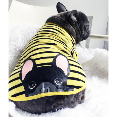 Bluenjy modeling his hypoallergenic frenchie clothing