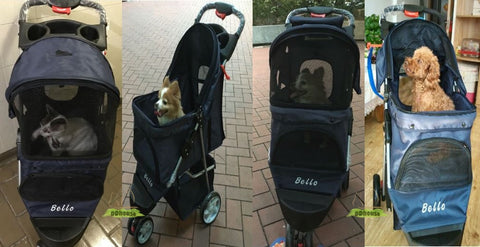 pet pram -ddhouse online pet supply