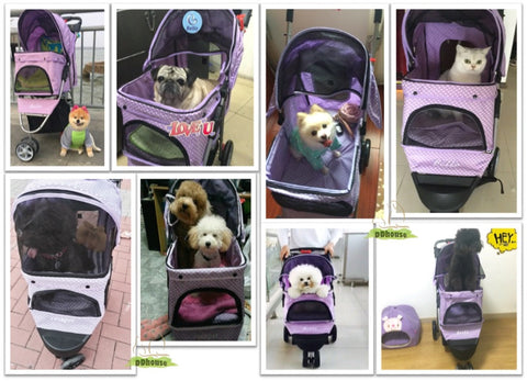 3 wheel pet pram -ddhouse