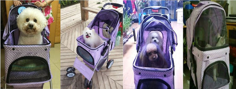 Singapore Pet Stroller 4 wheel purple Dot
