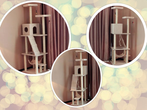 Cheap Cat Climbers Singapore Extreme Tall Cat Towers Cat Condos Cat Trees Free Delivery