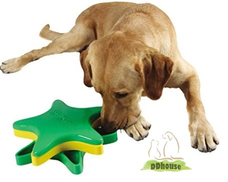 DDhouse pet online store pet supplies star spinner IQ interactive toy outward hound kyjen