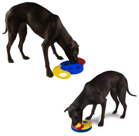 Kyjen Dog Games Yin Yang Yum Puzzle Dog Toy Outward Hound Yin Yang Yum IQ Games for Dogs Singapore