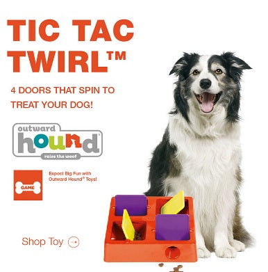 Kyjen Four Chambers Plastic Tic-Tac-Twirl Treat-Hiding Puzzle Toy Pet Dog Cat Food Slow Feeder Bowl Treat Game Outward Hound TIC TAC Twirl dog IQ Puzzle Games