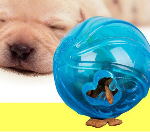 Outward Hound Kyjen Treat Ball Dog Puzzle Games IQ Dog Games Dog Activity Toys Singapore Pet Interative Games