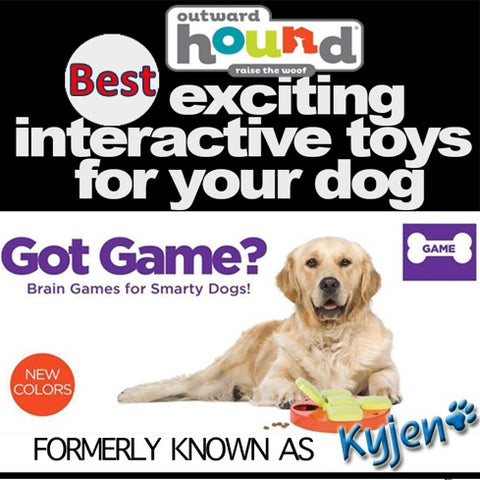 Kyjen Interactive Toys for dogs IQ dog games Paw Hide Hound Treat Toys Dog Toys Dog Puzzle Training Toys