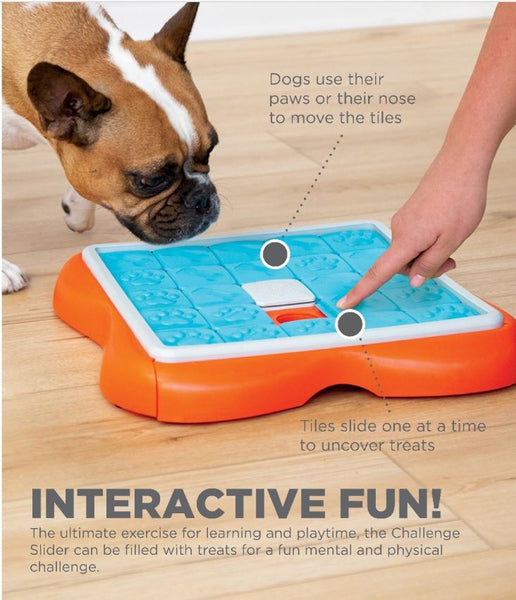 Ultimate exercise for learning and playtime for dogs. Pet interactive fun toys