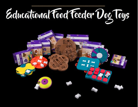 Treat Maze Toy Pet Dog Puppy High IQ Development Training Interactive Game Toy Educational Food Feeder Toys