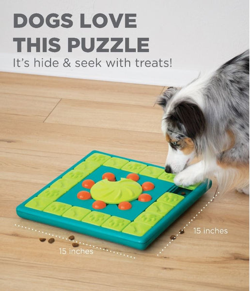 Dog love this puzzle. it's hide & Seek with treats