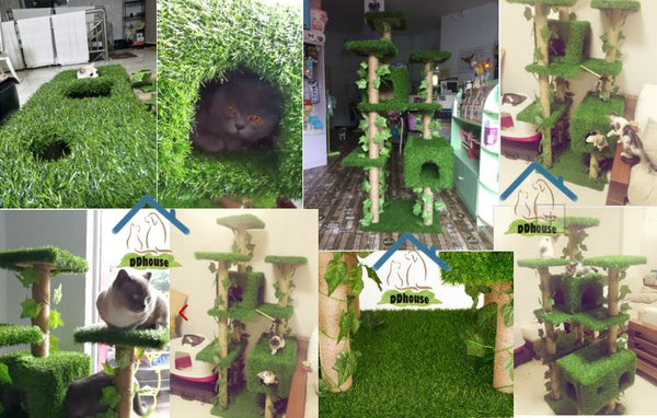 Singapore online Cat Furniture Specialist Man Made Grass Cat tree Free Delivery DDhouse