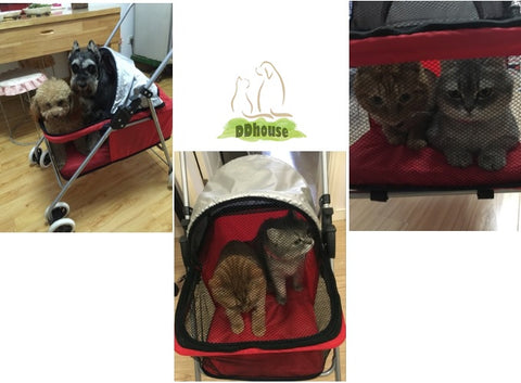 Light weight posh pet pram for dogs/cats- ddhouse