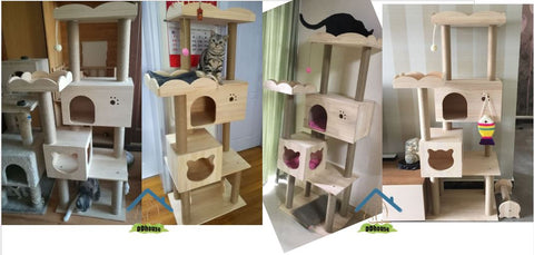 Singapore cat Furniture