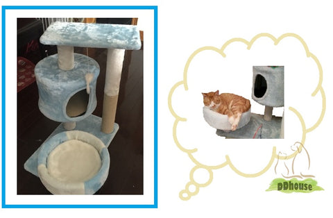 light blue medium size cat tree ddhouse online pet supplies