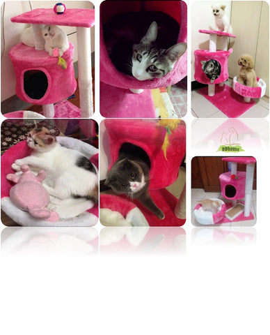 Hot pink white medium size cat tree cat house cat condo