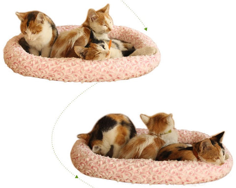 Super Soft Fleece Pet Bed Mats Puppy Dog Cat Sleeping Cushion Mat Pet Bed Cat Bed Puppy Beds Singapore
