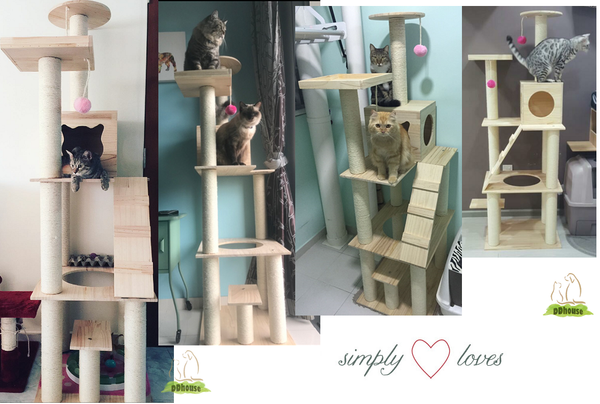 Solid wood cat tree extremely tall suitable for both kitten and cats