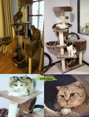 Light Grey Big and Spacious Cat Condo | DDhouse Singapore Online Pet Supplies