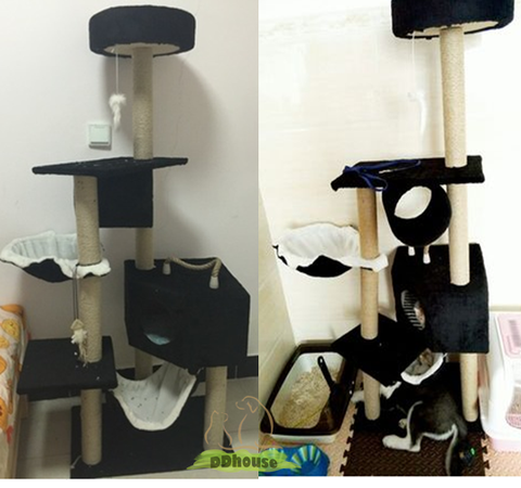 Cat scratching Post Cat Condo cat climber DDhouse singapore online pet supplies