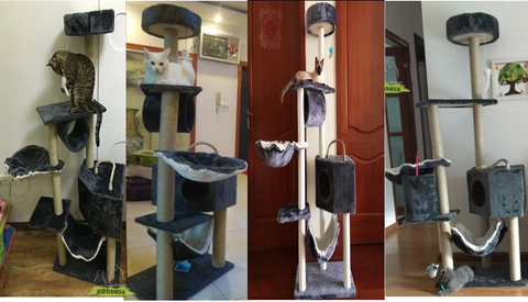Dark Grey Tall Cat tower for kitten and cat | DDhouse