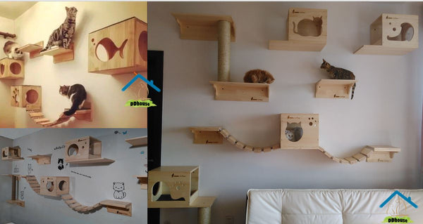 Modern Cat Perches Houses & Scratchers  Wall Mounted Singapore