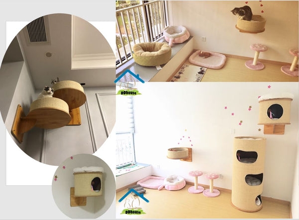 Cat Transit System Wall Mounted Cat Furniture Singapore