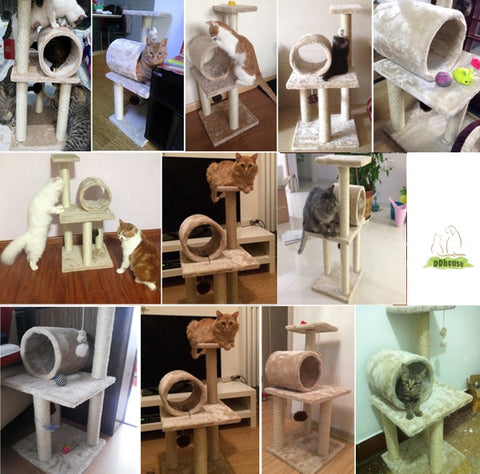 Cat Condo For all Cat and Kitten - DDhouse