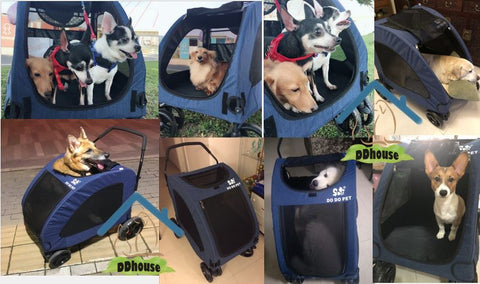 Pet Gear Expedition Pet Stroller for cats and dogs up to 55kg
