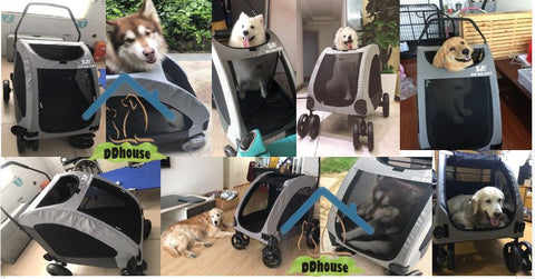 Pet Gear Expedition Pet Prams for cats and dogs up to 55kg