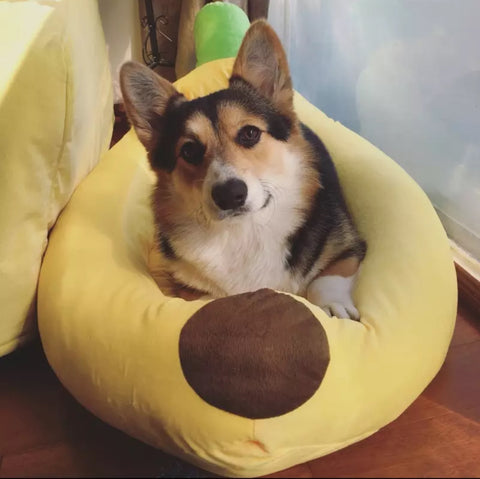 Banana Dog Bed