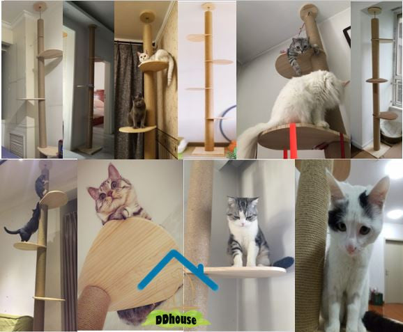 12cm Extra Thick Full Length Floor To Ceiling Wooden Cat