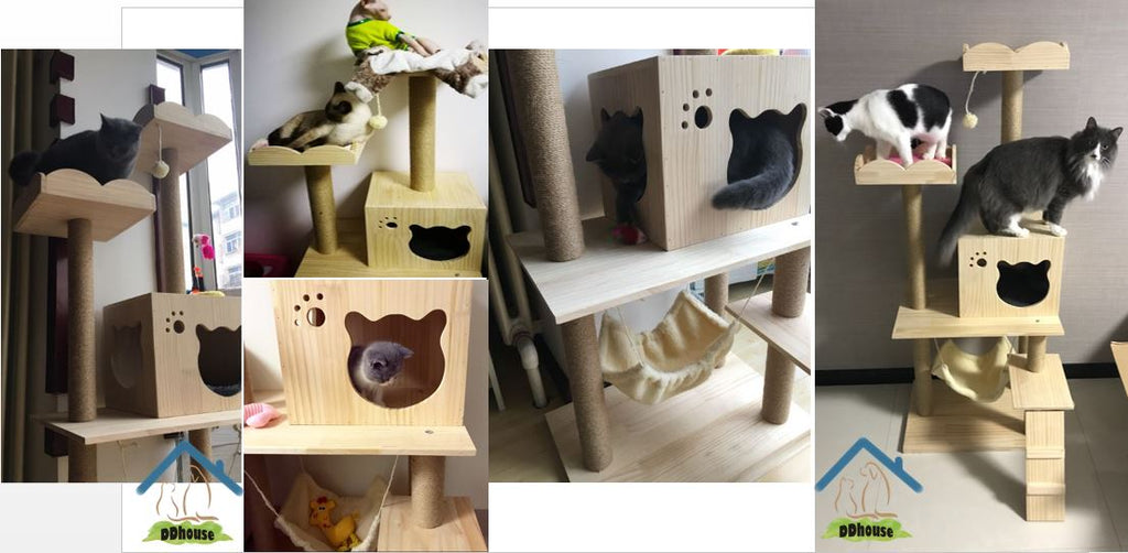 Singapore Solid Wood Cat Condo Cat Furniture With Boarder