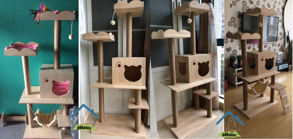 Singapore Quality Cat Furniture Cat Products