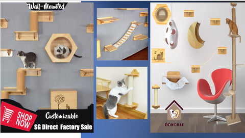 This Old House Cat Shelf and Activity Center Wall Mounted Cat Shelves Wall Mounted Cat Shelf