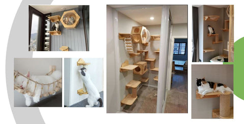 The Kittyloft Walk Way for Cats On the Walls Cat Trees Wooden Singapore