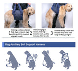 Dog Auxiliary Belt Dog Lift Support Harness