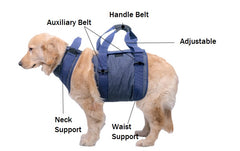 Walking Aid straps for aged dog and injured dog