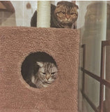 185cm Indoor Cat Tower Tree - DDhouse Singapore Online Pet Supplies and Pet Products - 11