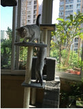 185cm Indoor Cat Tower Tree - DDhouse Singapore Online Pet Supplies and Pet Products - 5