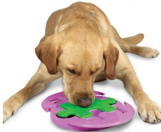 Outward Hound Jigsaw Glider Dog Toy