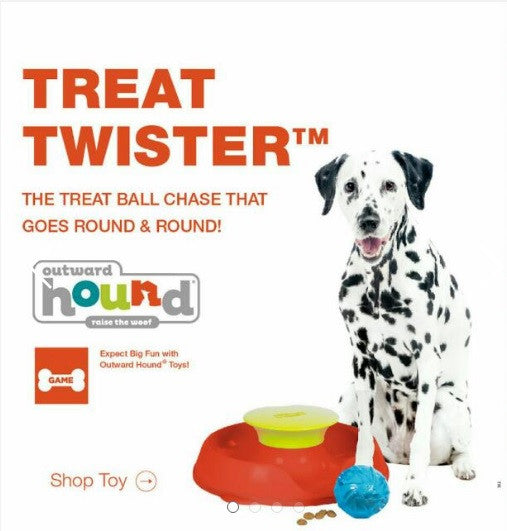 Outward Hound Kyjen Treat Twist Dog Toy