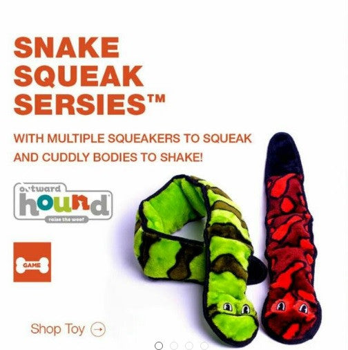Outward hound Kyjen Invincibles Snakes Dog Toys