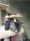 Solid Wood Triple Top Cat Condos - DDhouse Singapore Online Pet Supplies and Pet Products - 10
