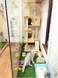 Solid Wood Triple Top Cat Condos - DDhouse Singapore Online Pet Supplies and Pet Products - 14