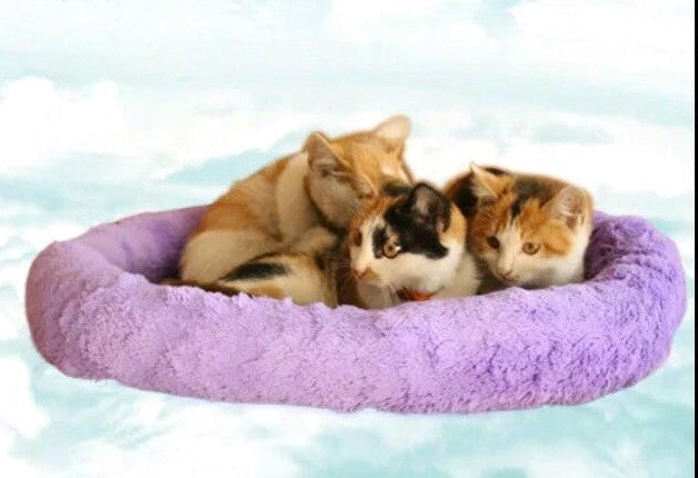 Soft Fleece Pet Bed Sleeping Cushion - DDhouse Singapore Online Pet Supplies and Pet Products - 3