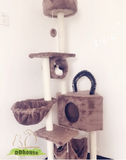 cat faourite toy cat tree cat playhouse cat condo
